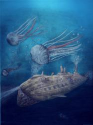 F16-concept-jellyfish.png