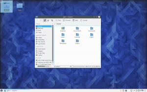 F23 KDE File Manager final.png