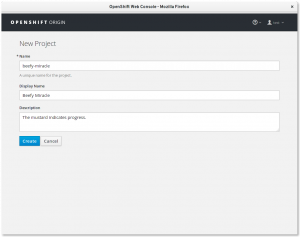 F24-OpenShift-02-NewProject.png